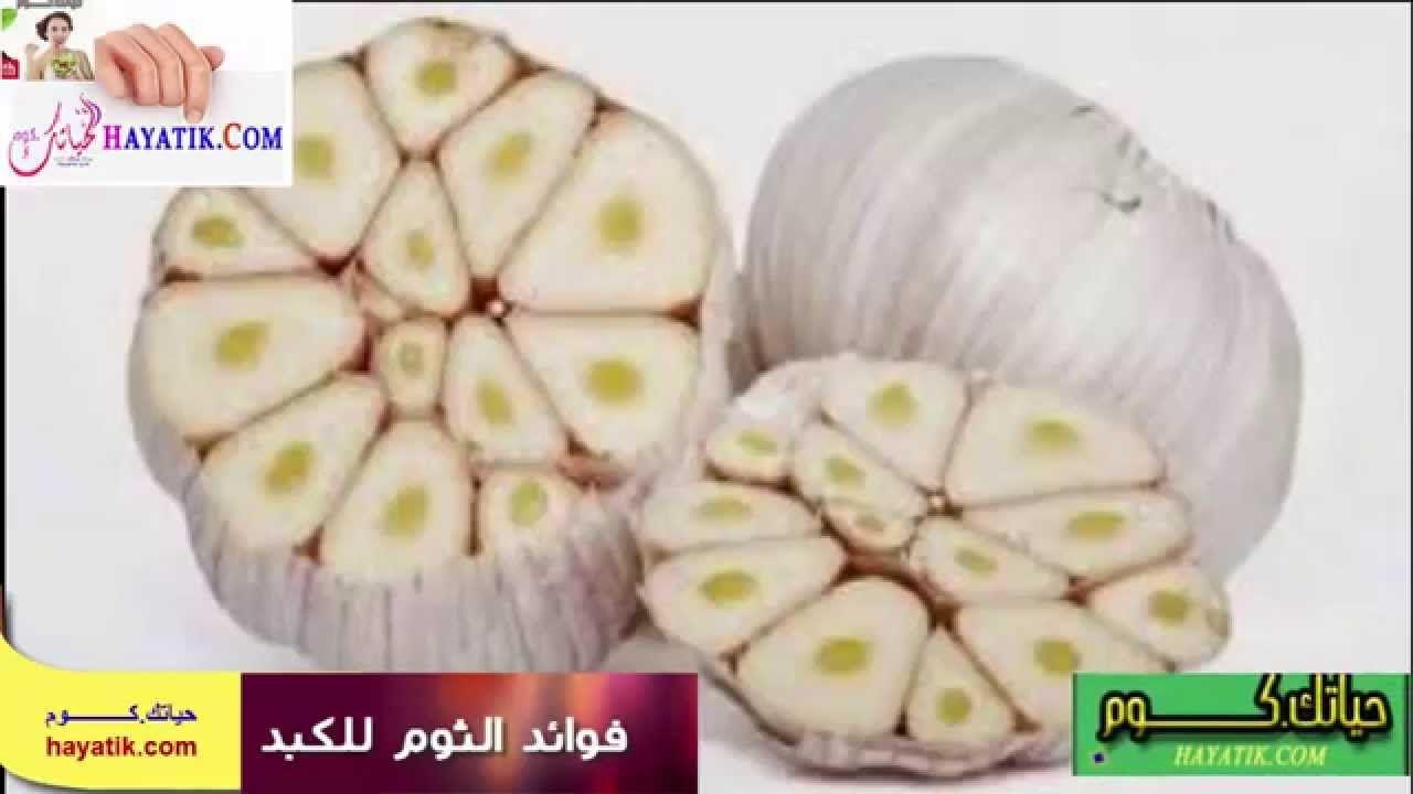 فوائد الثوم للكبد فوائد زيت الثوم ففوائد الثوم للشعر فوائد الثوم للجنس Healthy Recipes Food Garlic