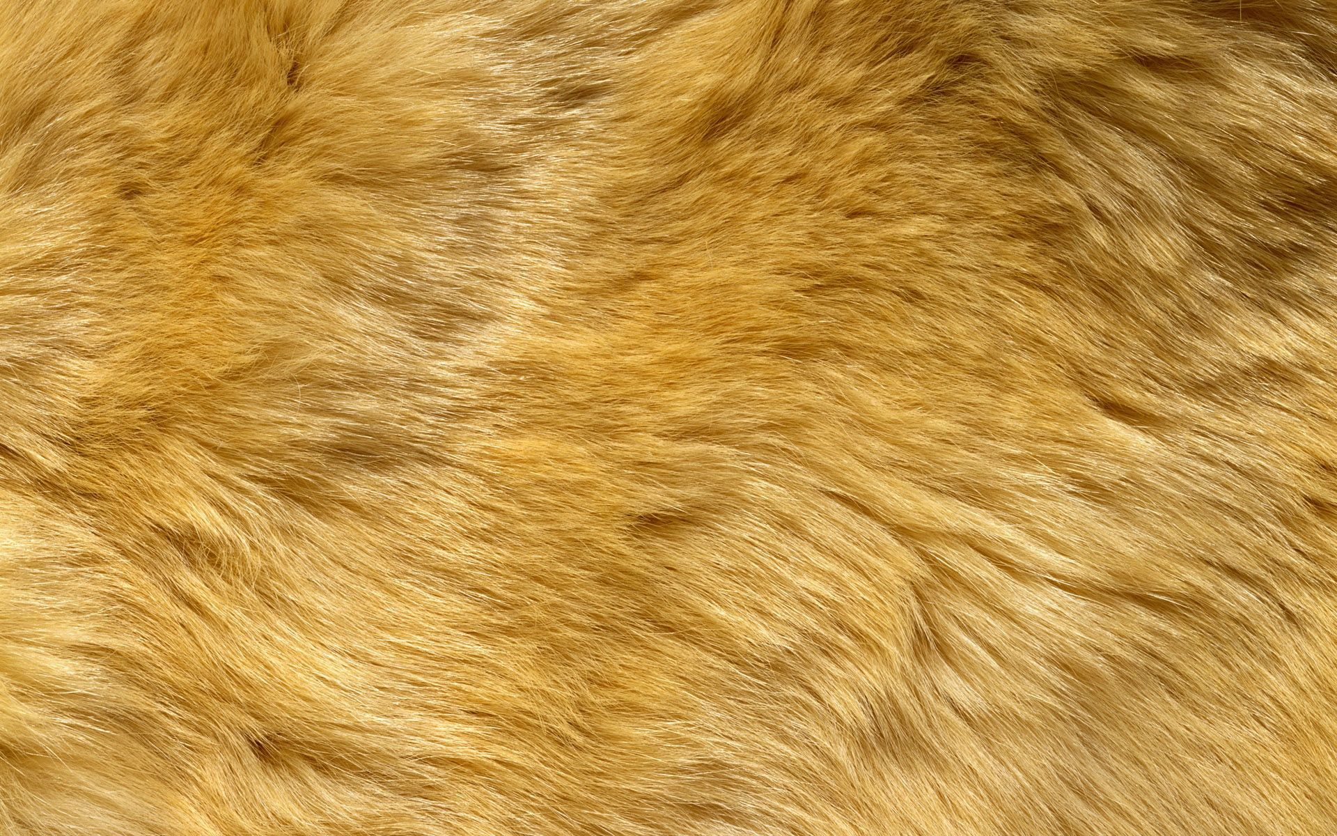 Free Fabric Textures | Free fabric texture lion texture | Baby ... for Fabric Texture Pattern Hd  56mzq