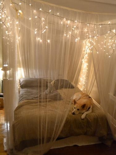 Create A Magical Co Around Your Bed With Gauzy And Glittering Canopy Simply Hang Sheer Drapery Panels On Wire Rope Threaded Through Eye Hooks In The