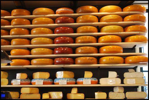"""""""Mag ik kaas?"""" Dat is toch één van de vragen die voorbij komt als je met FODMAP aan de gang bent. Ja, dat mag. Maar niet alle kaas."""