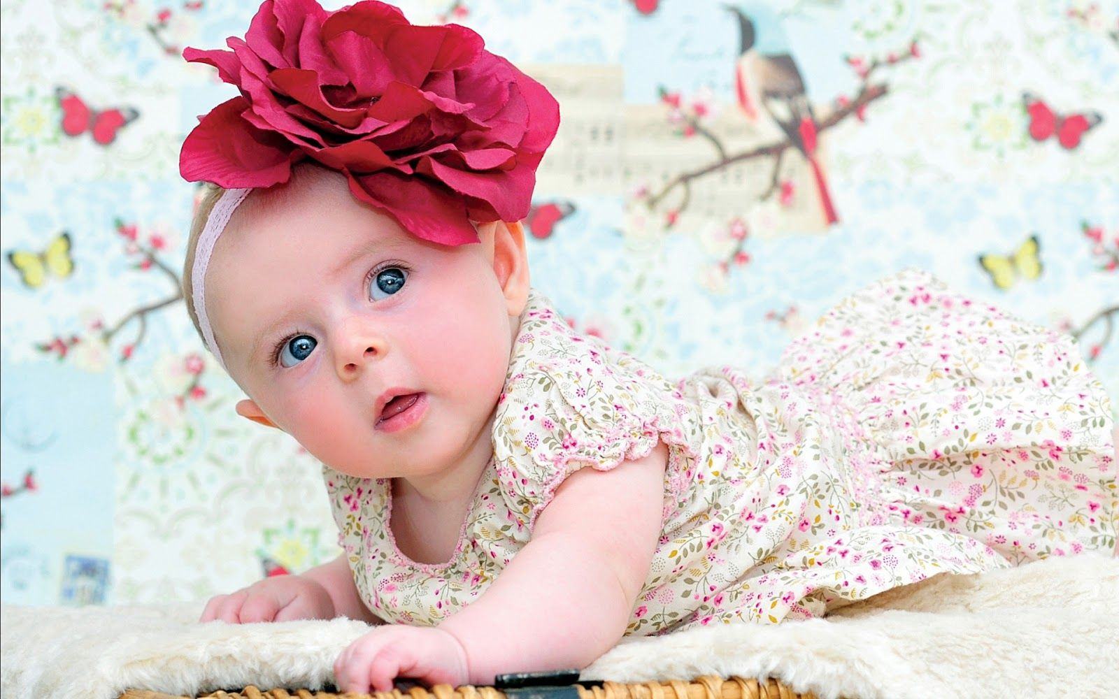 Cute Baby Picture Hd Wallpaper Free Download 3d Android Baby