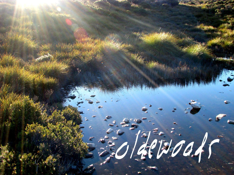 Tasmanian Sunrise Lake Dove Landscape Downloadable