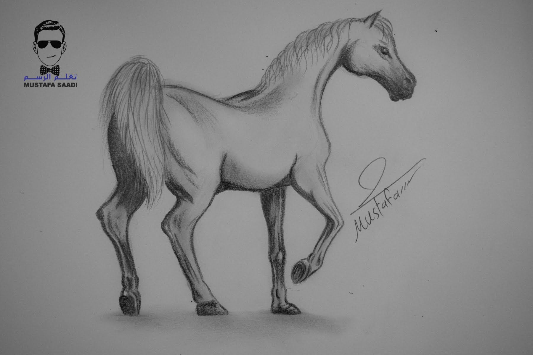 تعلم كيفية رسم حصان بالرصاص مع الخطوات للمبتدئين Animal Drawings Sketches Art Drawings