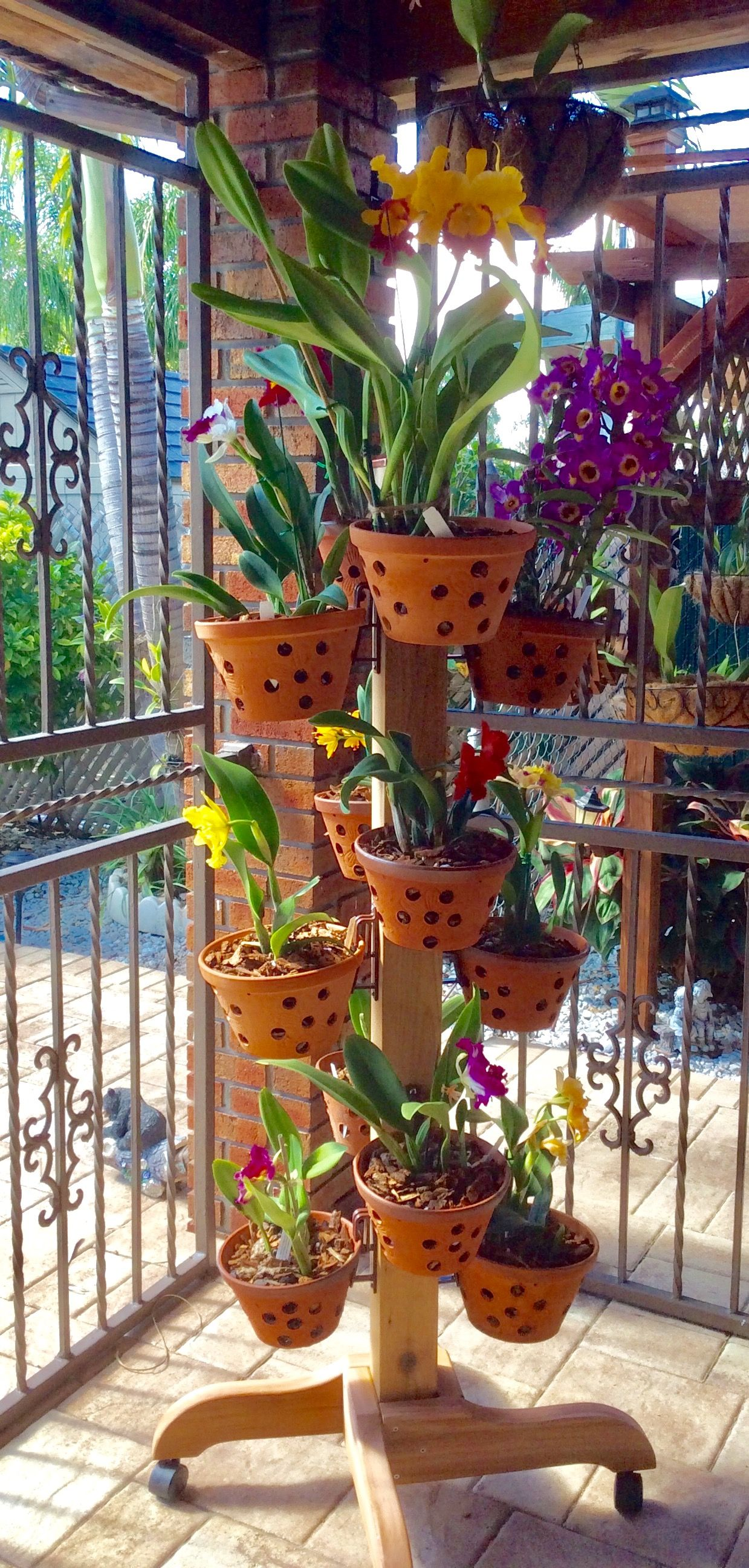 Vertical garden design with orchids space saving backyard landscaping - 12 Amazing Ideas For Indoor Herb Gardens