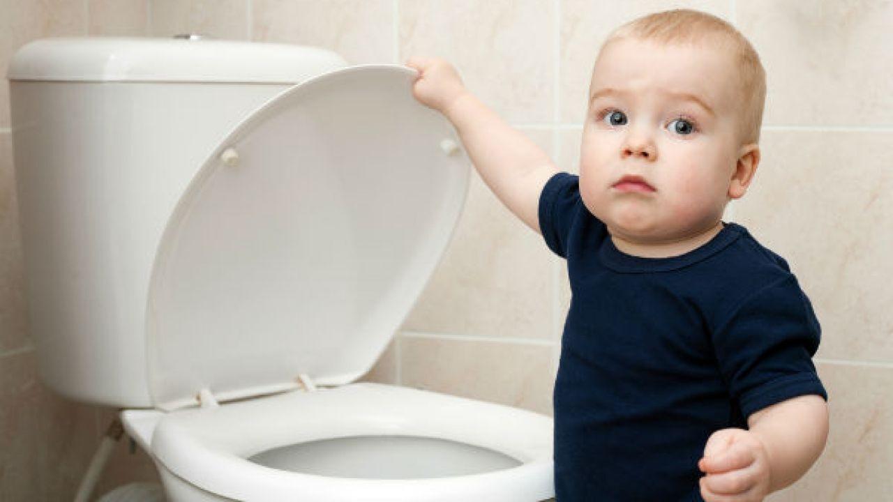 كيف تعلمين طفلك دخول الحمام Starting Potty Training Training Your Dog Black Water