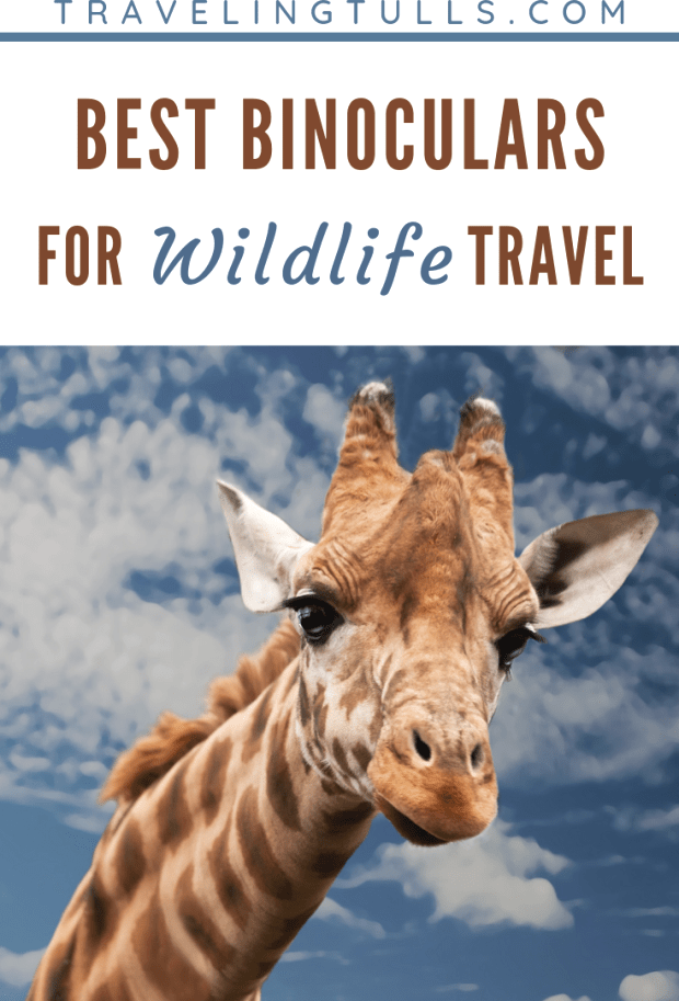 Photo of Best binoculars for travel (and home!) Recommendations for compact, lightweight …