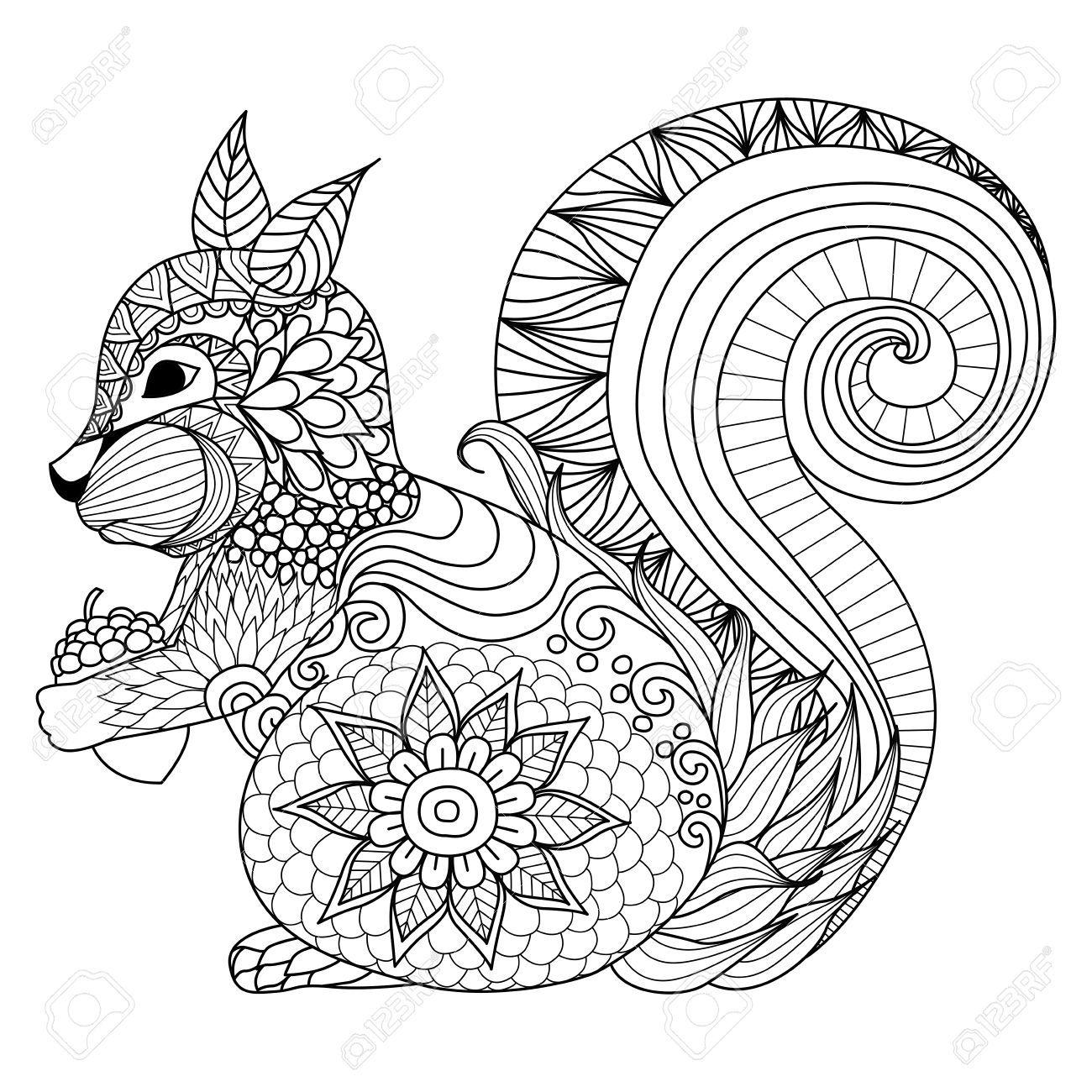 Afficher l 39 image d 39 origine ecureuil 1 pinterest images coloriage et cureuil - Coloriage d ecureuil ...