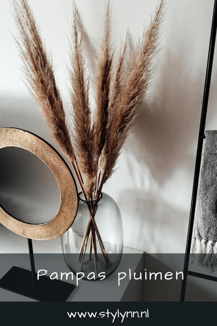 Photo of Pampas pluimen | droogbloemen | Decoratie #interieurwoonkamer
