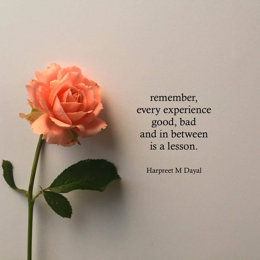 Harpreet M Dayal There Is A Lesson In Everything Pretty Quotes Healing Quotes Rose Quotes