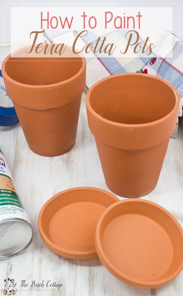 How to Paint Terra Cotta Pots – Terracotta flower pots