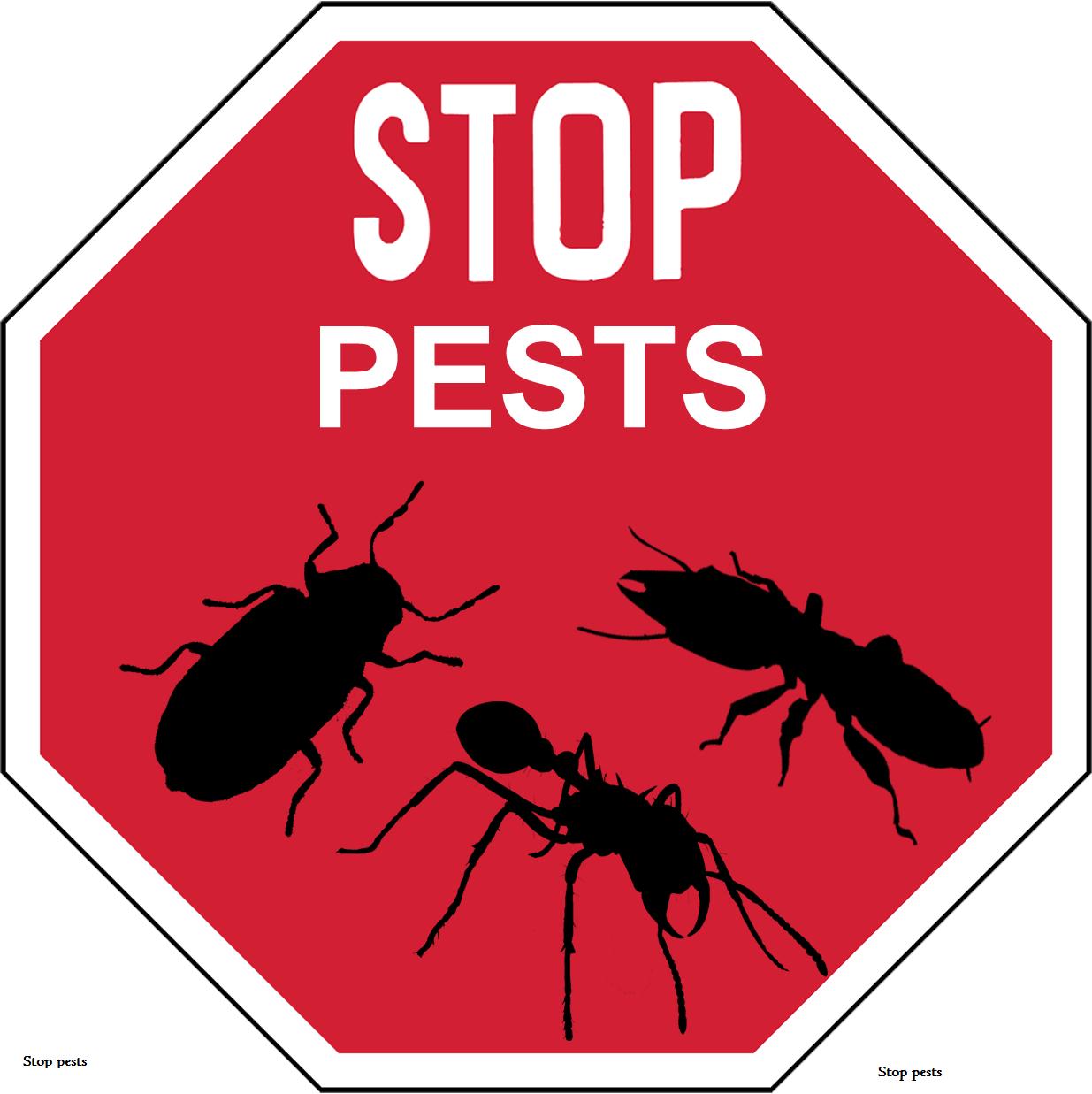 to Jopestkil Kenya's focused pest control in