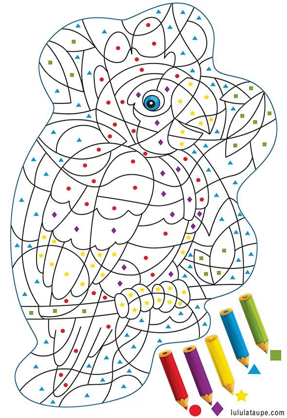 Coloriage magique gratuit, un perroquet | Coloriage magique, Coloriage, Livre coloriage