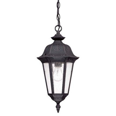 Astoria Grand Shaw 1-Light Outdoor Hanging Lantern   Wayfair