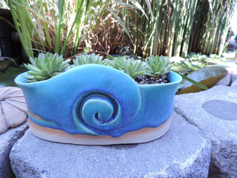 garden pottery for plants