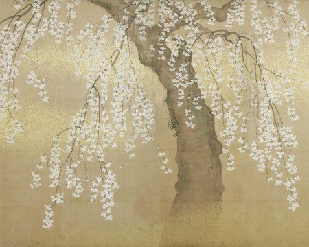 Cerisier Japonais Papier Peint Revetements Graphiques