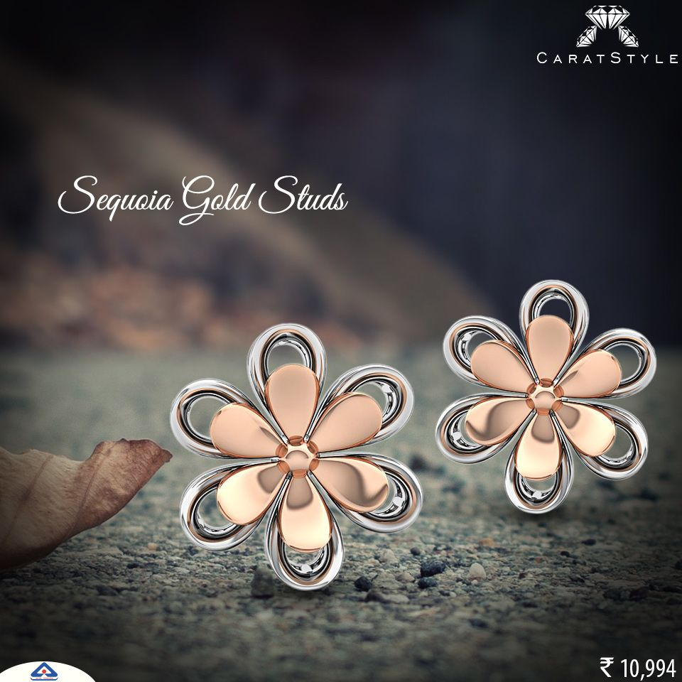 A new Experience stud earring rosegold Bling