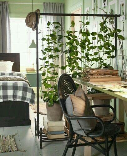 Urban jungle interieur idee: hang geen kleren aan een kledingrek, maar planten! Zo creëer je een tropische scheidingswand, die ook nog een fotogeniek is!