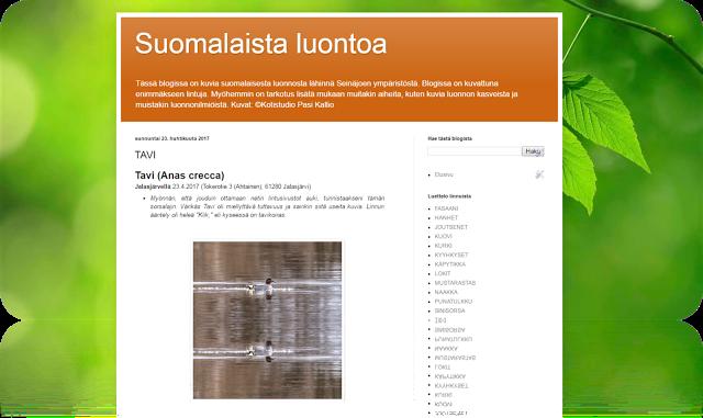 Kotistudio Pasi Kallio - luontokuvauksia