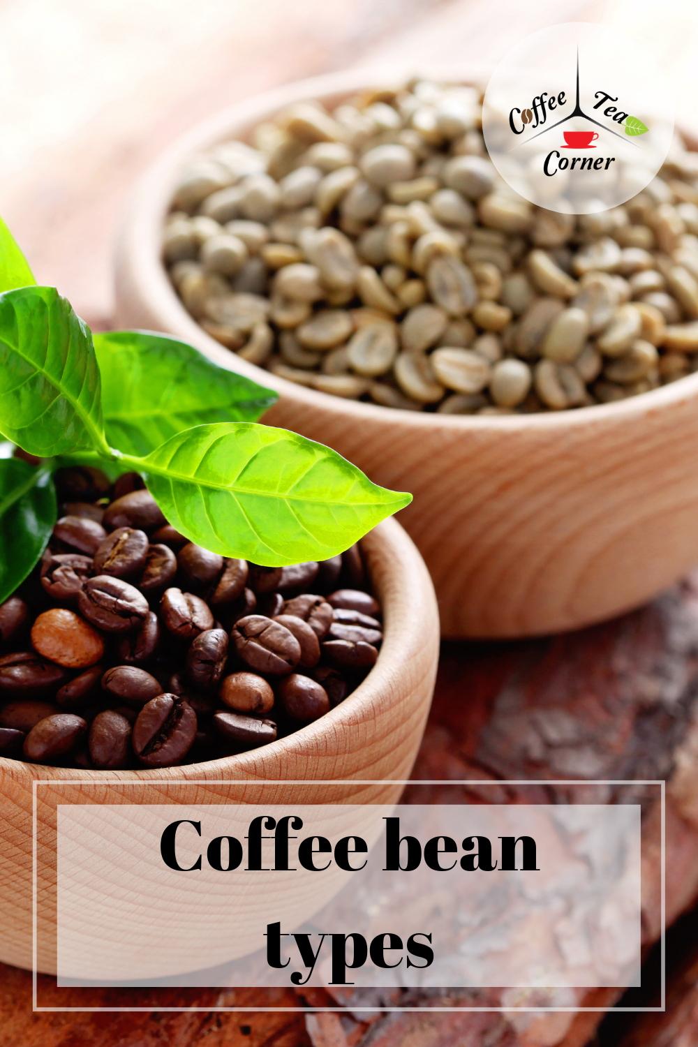 Coffee Bean Types Geography And Climate In Your Cup Of Joe Coffee Beans Joe Coffee Coffee Recipes