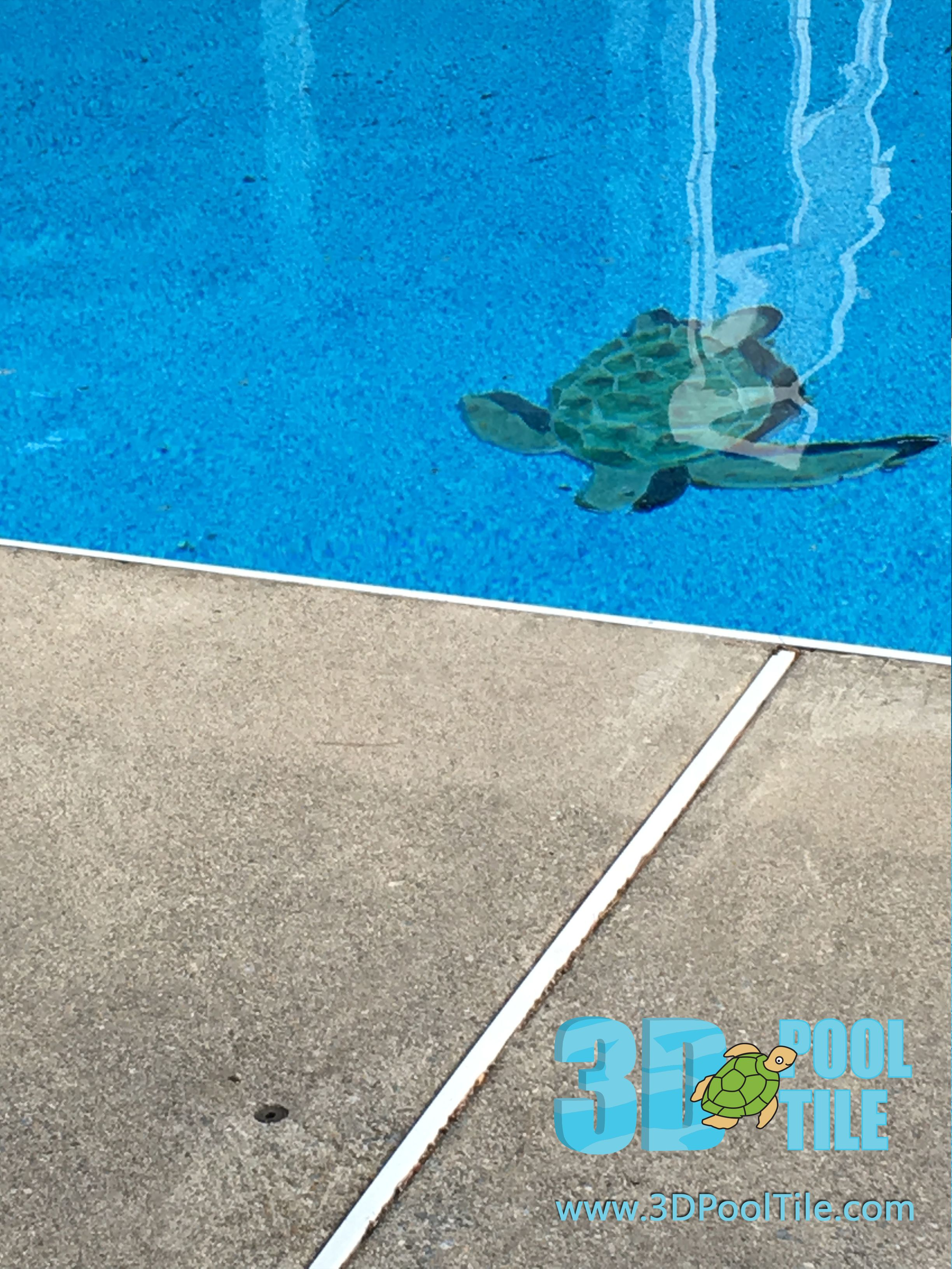 3d pool tile turtle- looks like he is swimming to the deck. diy