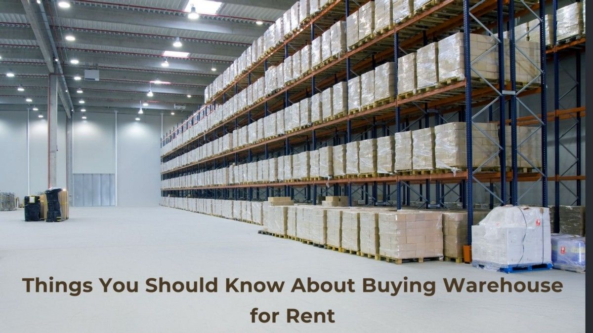 Things You Should Know About Buying Warehouse For Rent Warehouse Rent Industrial Sheds
