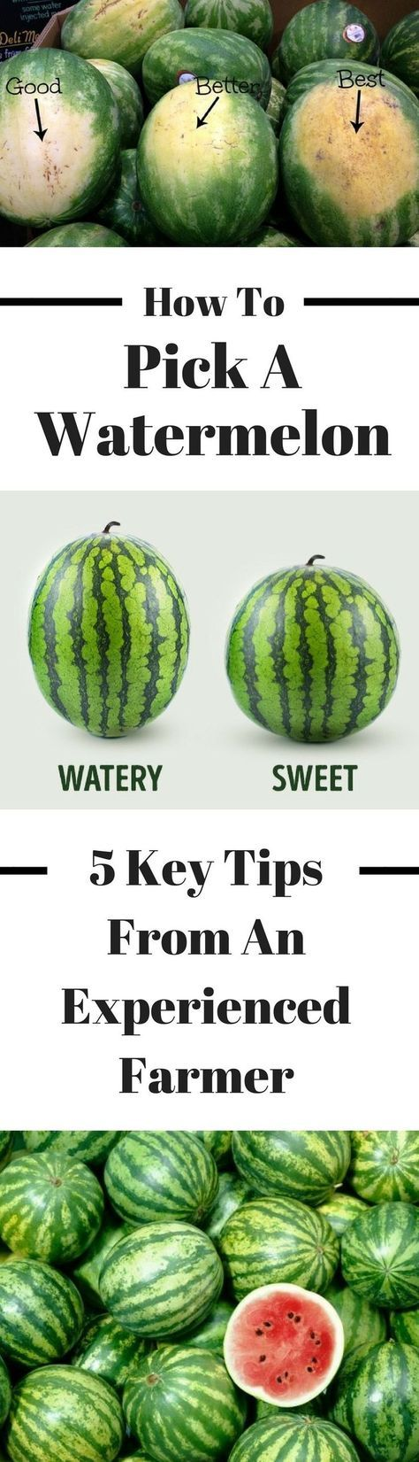 How to pick the perfect watermelon: 5 key tips from an experienced farmer #foodtips