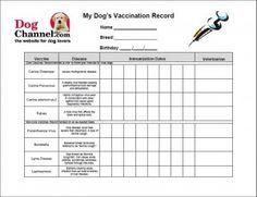 puppy shot record