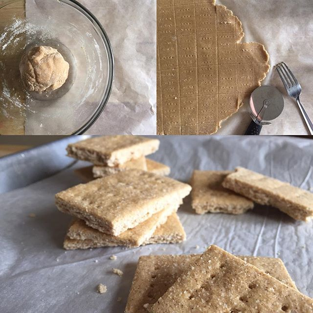 """""""Since @proteincakery shared these gems (which I just made again), I figured why not share as well!  Protein Graham Crackers 3/4 cup coconut flour 1/2 cup @slapnutrition whey isolate 1/2 tsp sea salt 1 tsp baking powder 1 tsp cinnamon 4 tbsp coconut oil (softened) 1/2 cup sweetener of choice 1 tbsp vanilla 2 whole eggs Preheat oven to 300 degrees...."""