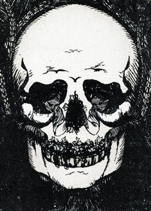 30+ Skull illusion ideas in 2021