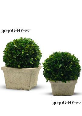 Decorative Boxwood Balls 6In & 8In Preserved Boxwood Ball In Square Pot  Wedding Stuff