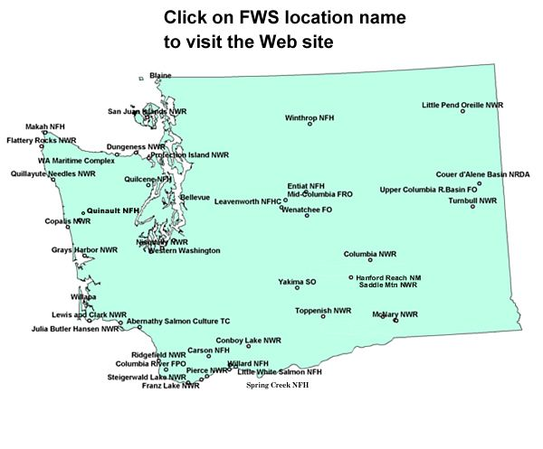 Washington State Fish And Wildlife Services Regional Map Region Washington Map