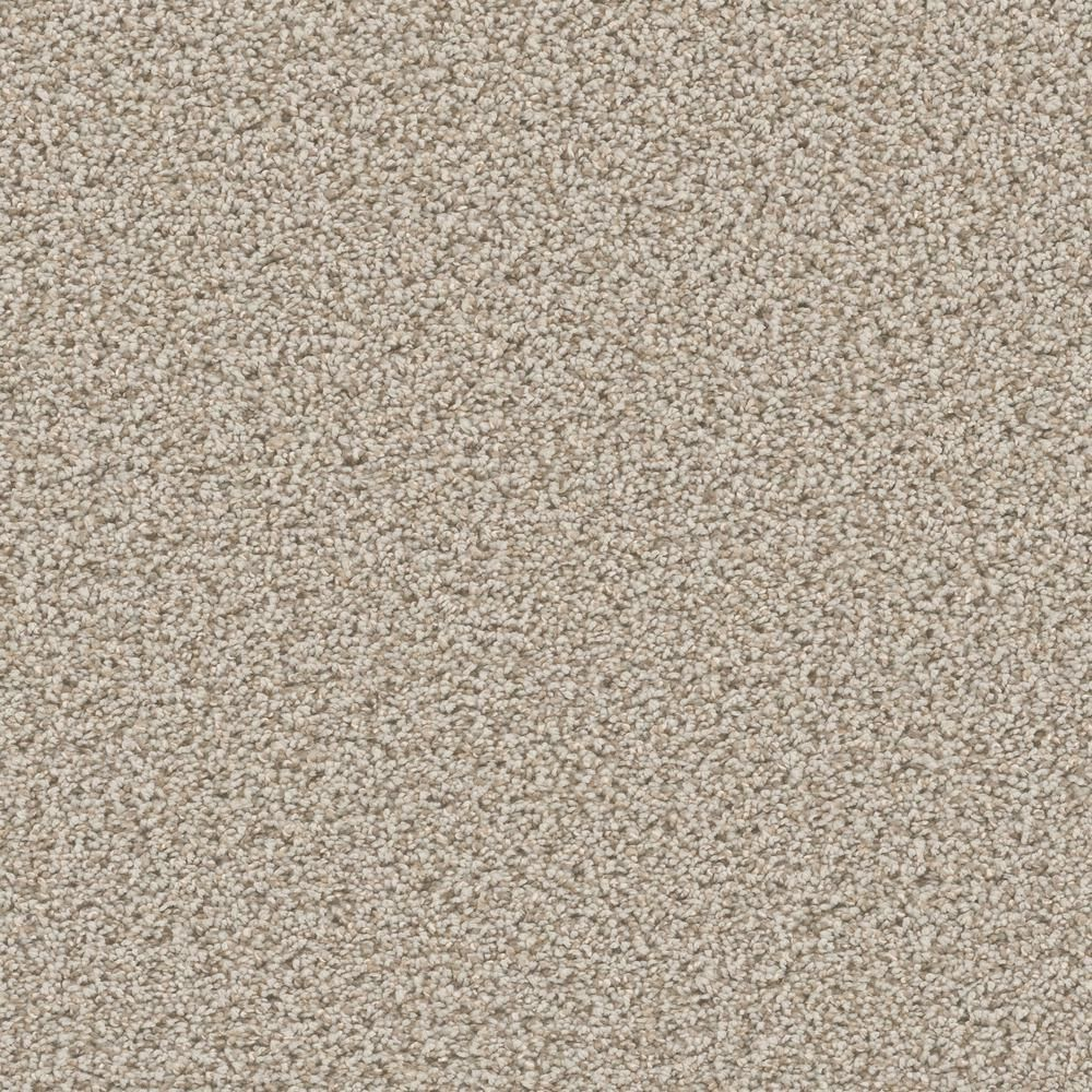 Home Decorators Collection Carpet Sample Delight I Color 905 Cheery Texture 8 In X 8 In Ef 469948 The Home Depot In 2020 Carpet Tiles Textured Carpet Carpet Samples