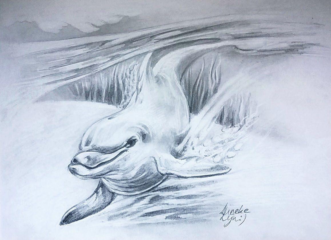 Hoe Teken Je Een Zwemmende Dolfijn Dieren Tekenen 29