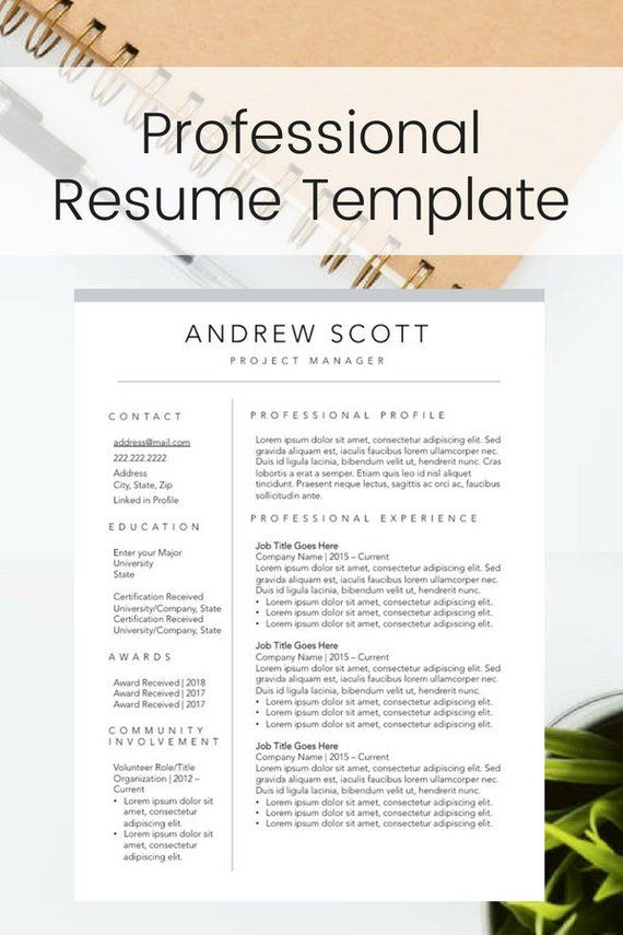 modern professional resume template perfect for the new graduate or the seasoned professional