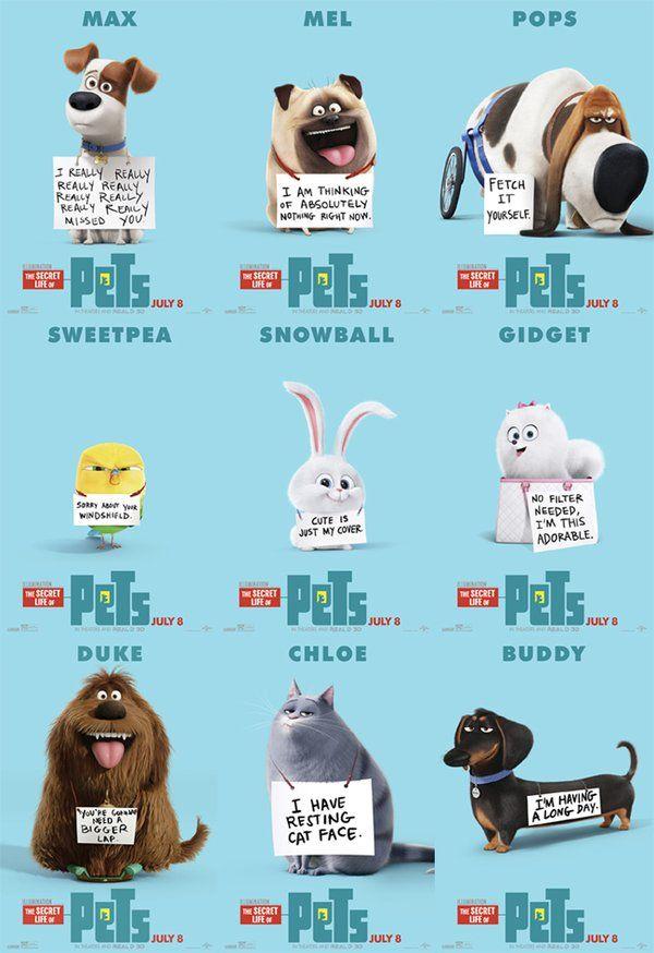 Imgur Post Imgur in 2020 Pets movie, Pets, Secret life