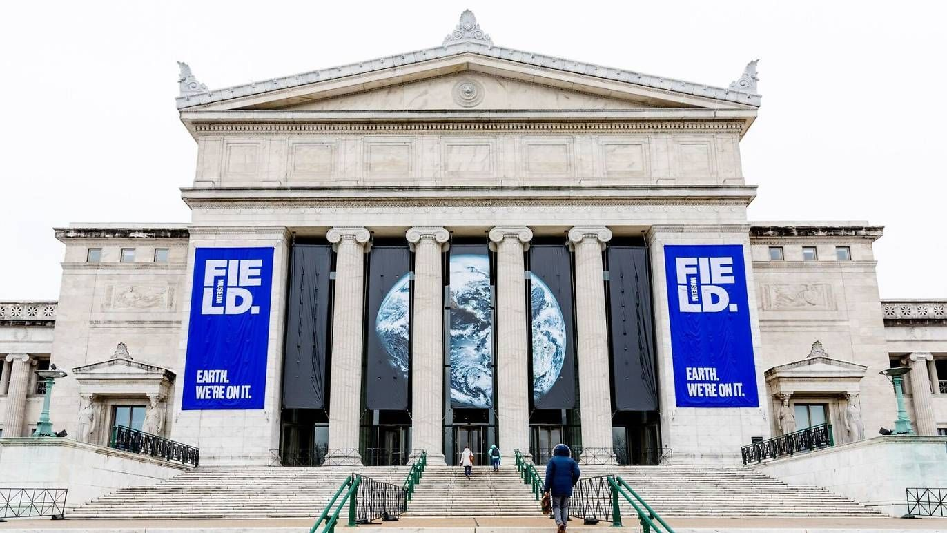 Free museum days at the best Chicago museums Field