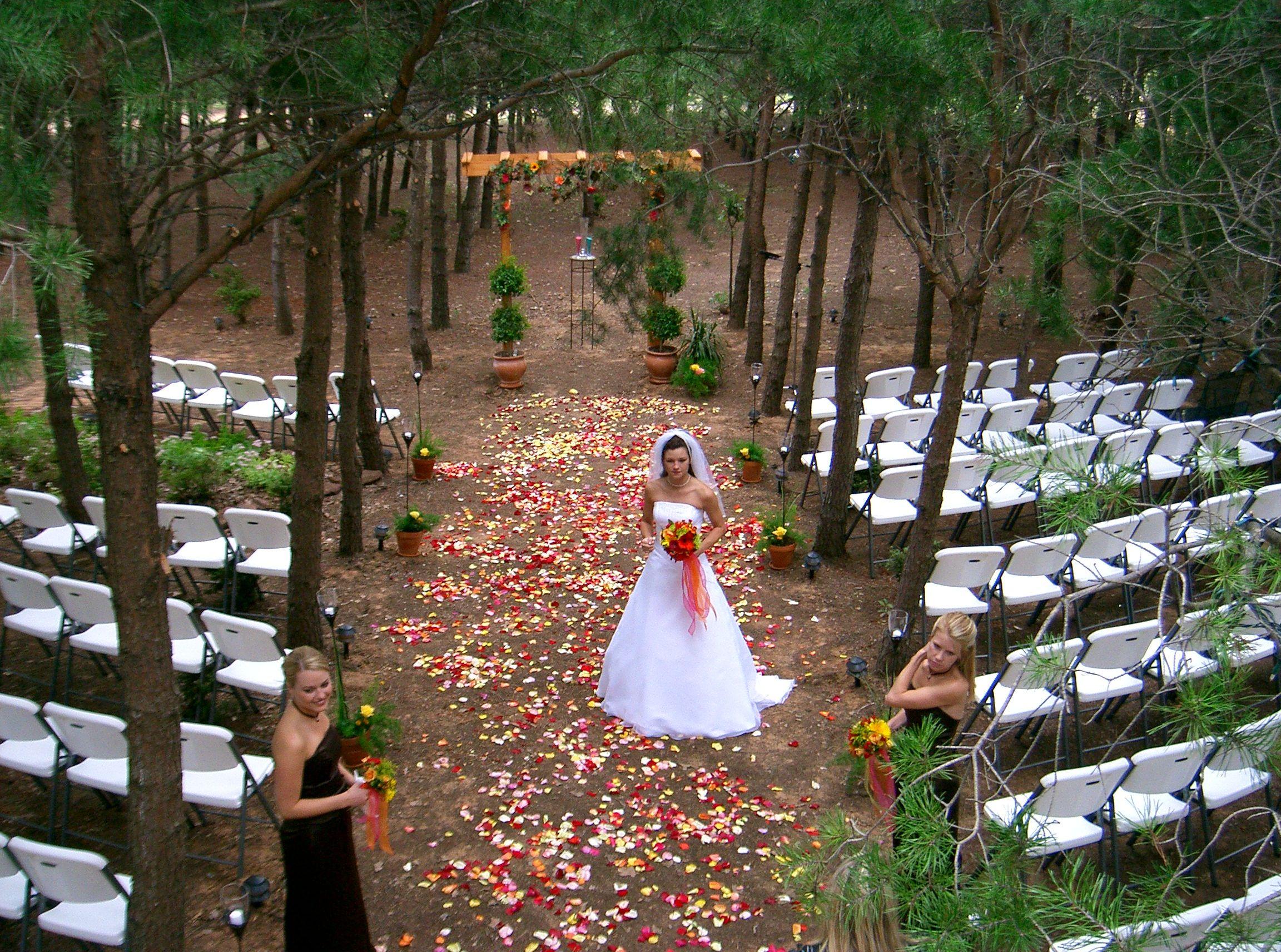 Budget savvy wedding Romance on a budget Pinterest Vineyard