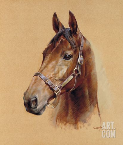 Legend (Best Mate) Limited Edition by Susan Crawford at Art.com