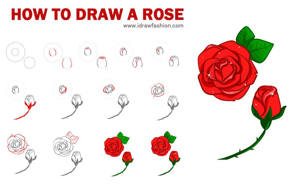 How To Draw Roses I Draw Fashion Roses Drawing Flower Drawing Tutorials Flower Drawing