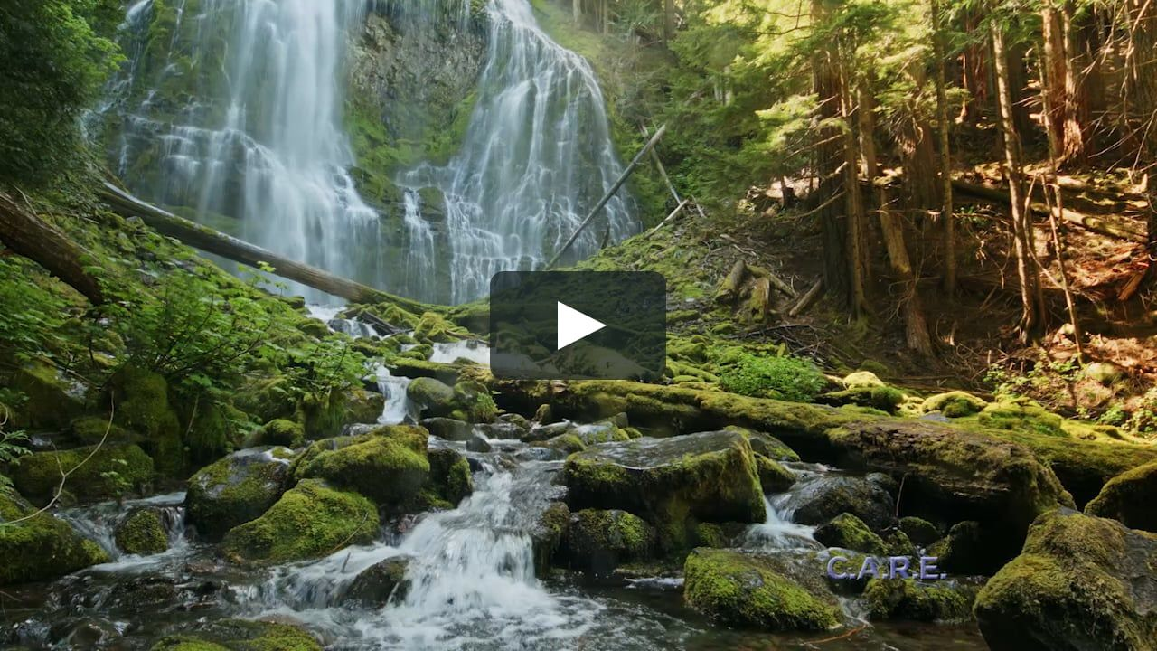 Watch Relaxing Music and Nature Videos Online | Vimeo On Demand