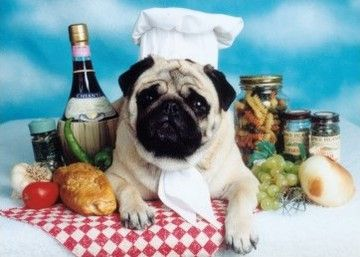 Italian Feast Pug Party Sample Sale Pug Dog Pugs Dogs