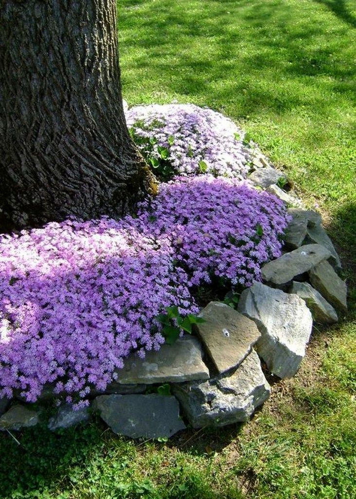 Amazing ideas with DIY flower beds made of stones