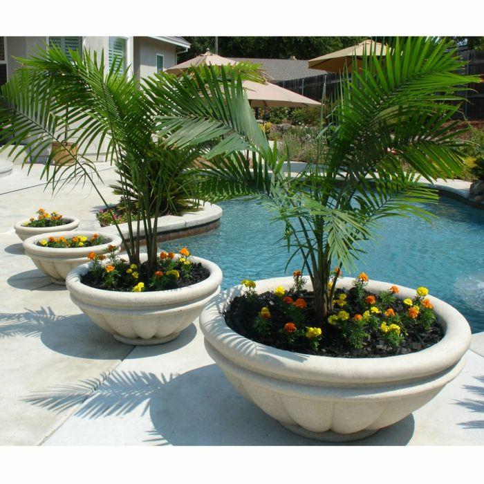 maceteros grandes decoracin de patio con piscina maceta grandes de cemento con palmeras y - Macetas Grandes