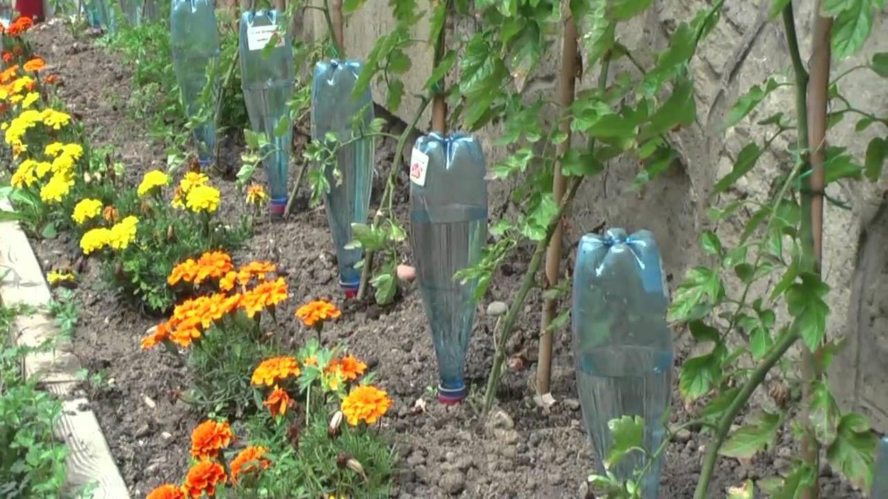 Pingl par kiks sur jardin pinterest jardins jardin - Arrosage automatique jardin potager ...