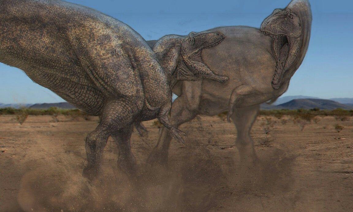 Pin by Antwan Jenkins on Dinosaurs/Prehistoric Mammals