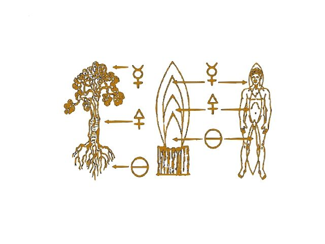 The hermetic work of Paul Tisdell Central to all Spiritual practice is a single flame. This flame has a cosmology, it is the light of the Kabbalah, the transmutive flame of Alchemy and the staff of the Adept Magician. This flame is life itself and is one with its purpose, its true will. By its statement Spiritual Development is an organic response to life. This is my work, as above so below