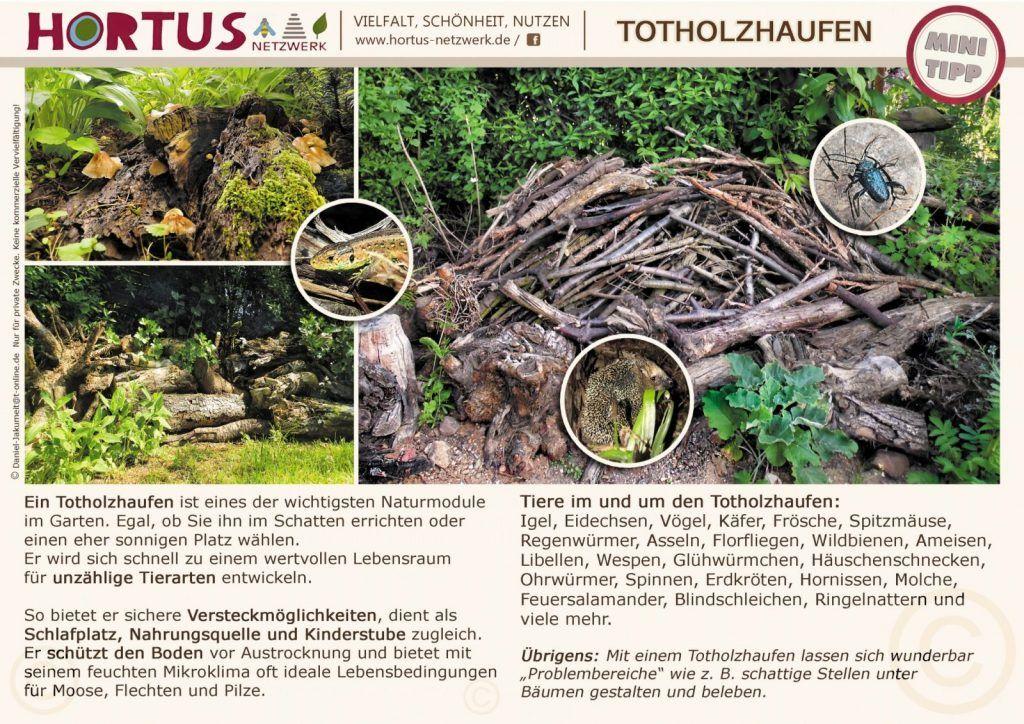 Totholzhaufen Hortus Netzwerk Garten Naturgarten Naturnaher Garten