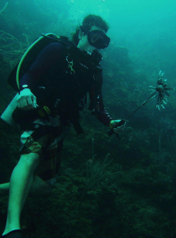 Scuba Diver From Atlanta Picks A Flower Underwater In Utila