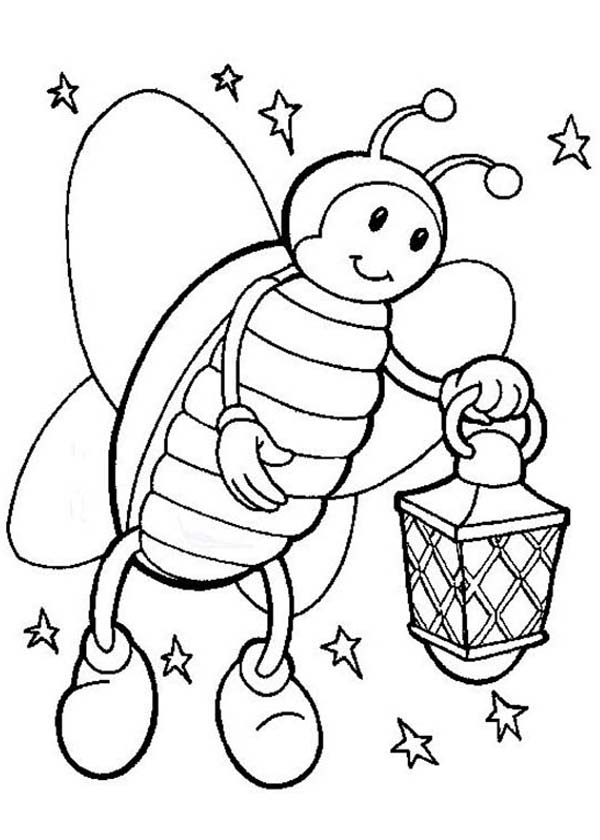 firefly on starry night hold a lamp coloring page  color