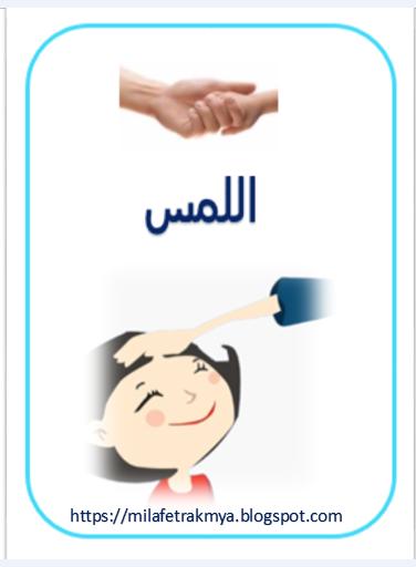 ملف بالصور عن سلامة الحواس Teach Arabic Teaching Blog